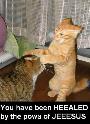 http://azahar.files.wordpress.com/2007/06/lolcat-faith-heealer.jpg
