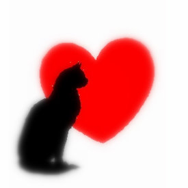 cat-heart.jpg