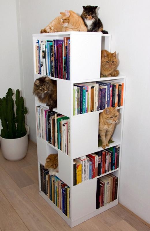 Cat book shelf case tree thingy casa azahar for Tree of life bookshelf