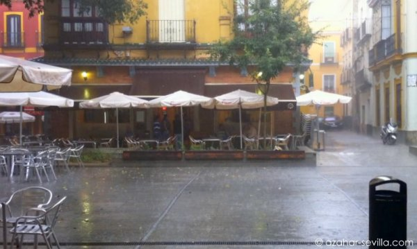 fff - rain