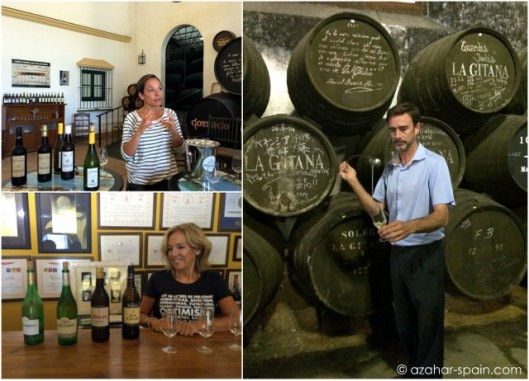 sanlucar sherry education