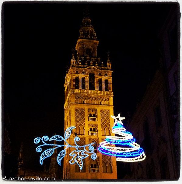christmas lights 14 (3)