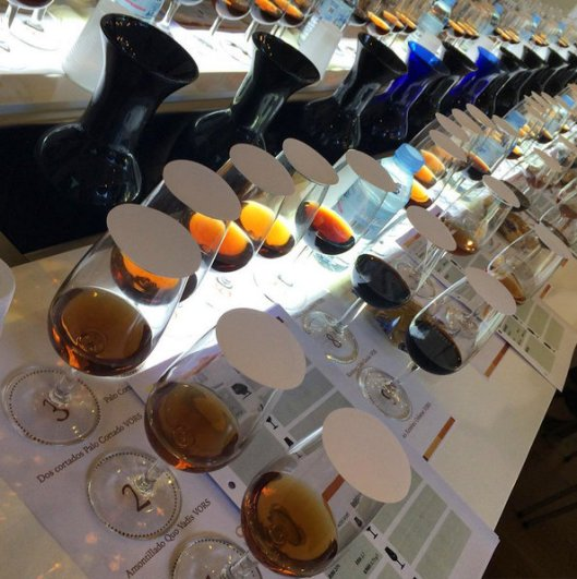sherry tastings (2)