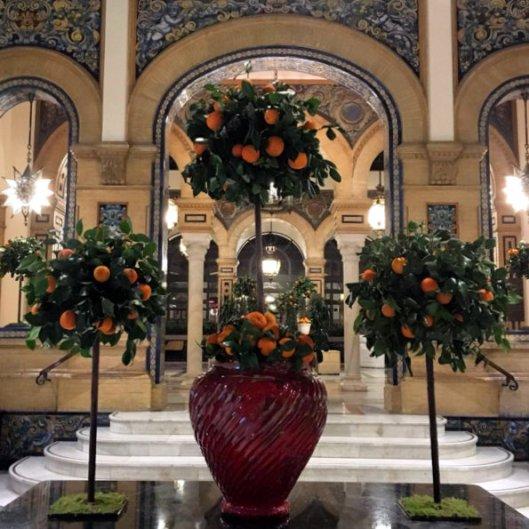 orange season (2)