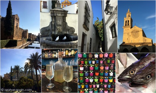 cordoba-collage