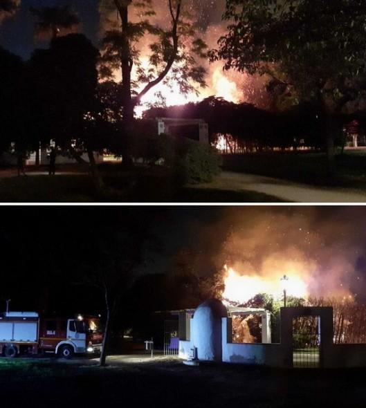 fire in maria luisa park (1)