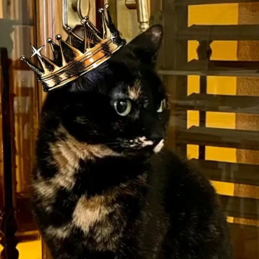 princess morcilla
